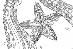 Homeschool Copywork: Hand Drawn Starfish Coloring Page
