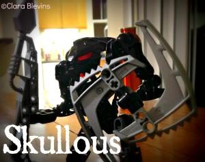 Skullous-1