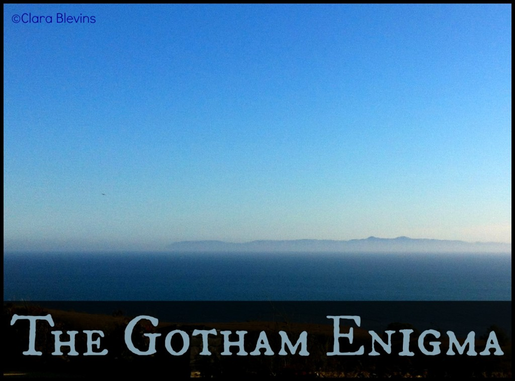 The Gotham Enigma - Chapter 8 (part 1)