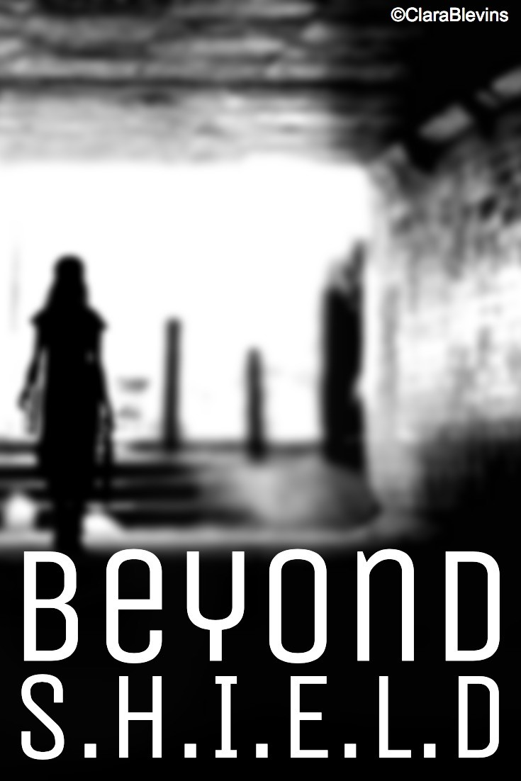 Beyond S.H.I.E.L.D: Barriers (part 3)