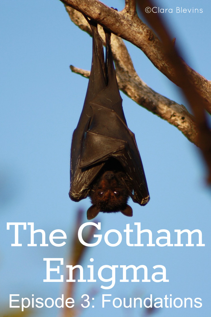 gotham-episode3-foundations-pin-1