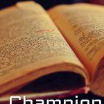 Destiny: Eidolon – Champion of the Light